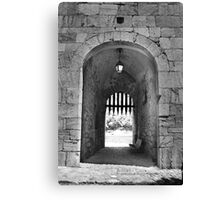 Gated community. Canvas Print