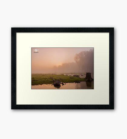 Delta Danube - Romania Framed Print