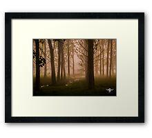 Fog Framed Print