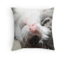 What do you want?! Throw Pillow