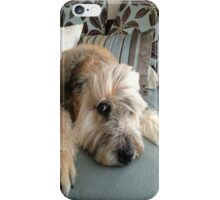 Adorable Dog iPhone Case iPhone Case/Skin