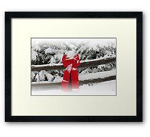 Winter Wonderland - British Columbia Canada Framed Print