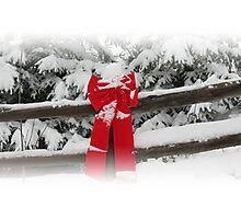 Winter Wonderland - British Columbia Canada Photographic Print