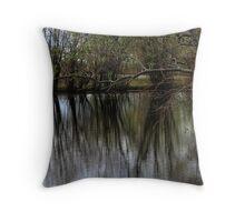 Lake - British Columbia Canada  Throw Pillow