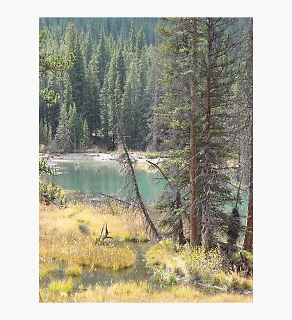 Peaceful Valley Photographic Print