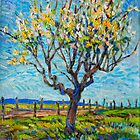 Apricot Tree by HDPotwin