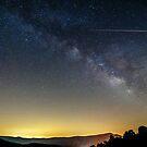 starry night by Alexandr Grichenko