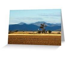 Nandewaa Range from Pikes Lane Greeting Card