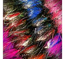 Steelhead Flies Photographic Print