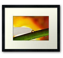 Heart of Flame Framed Print