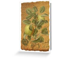 Vintage Apples & Ephemera Collage Design - Vintage Look Greeting Card - Apples Greeting Card