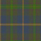 02853 Yavapai County, Arizona E-fficial Fashion Tartan Fabric Print Iphone Case by Detnecs2013