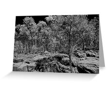 On Mt Kaputar, Narrabri Greeting Card