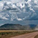 View from a dusty Stoney Creek Road by Elizabeth McPhee