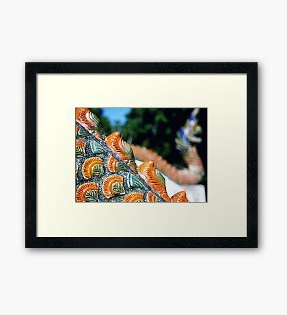 Naga scales  Framed Print