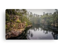 Ancient Forest Canvas Print