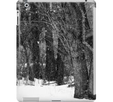 Black and White - snow day (2010) iPad Case/Skin