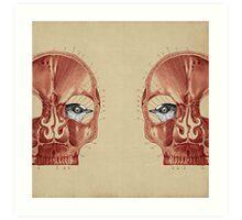 CANTO DE GOLONDRINAS COMO METAL CRUDO (vr.3) Art Print