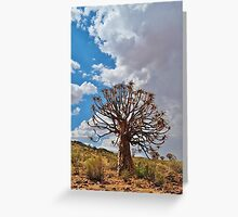 Towering Quiver Tree  Greeting Card