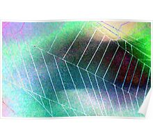 Colored Foil Spider Web Poster