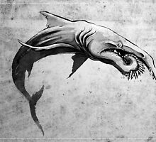 Helicoprion by didelphis