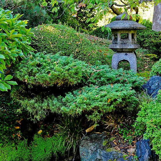JAPANESE GARDENS GOLDEN GATE PARK by Thomas Barker-Detwiler
