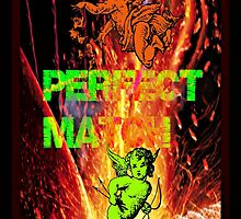 perfect match by DMEIERS