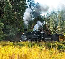 Steam Train 2 by Randy Giesbrecht