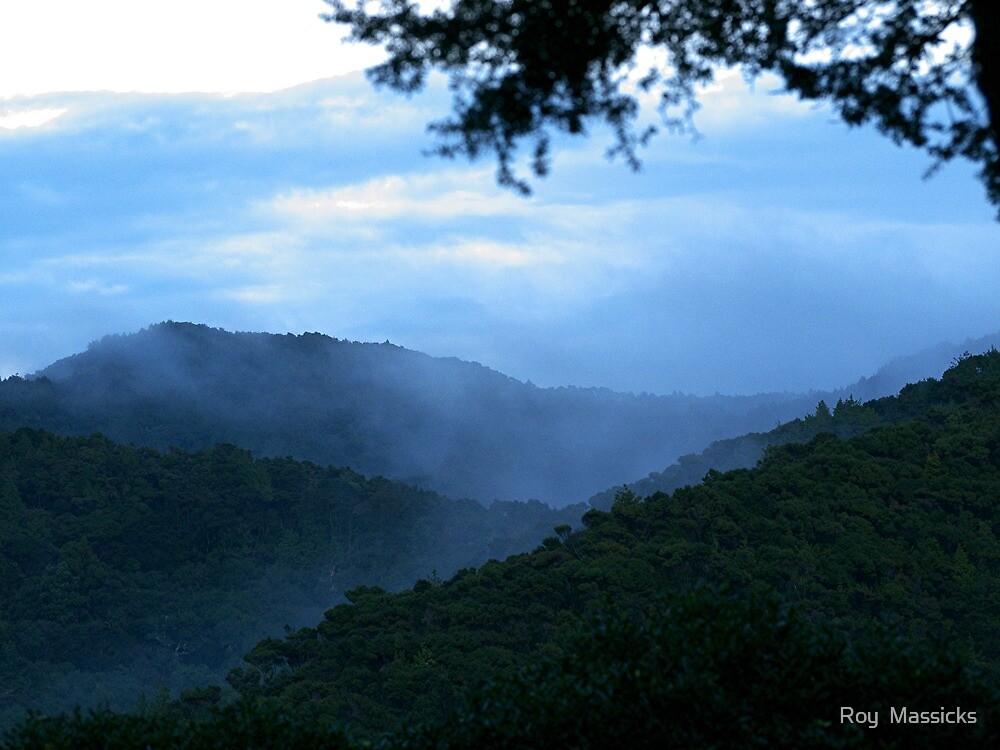 Misty.....Moody.....Valley ! by Roy  Massicks