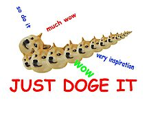 Just Doge It  Photographic Print