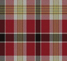 02857 Richmond County, Virginia E-fficial Fashion Tartan Fabric Print Iphone Case by Detnecs2013