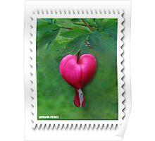 (✿◠‿◠)Lamprocapnos spectabilis(bleeding heart) Stamp Poster