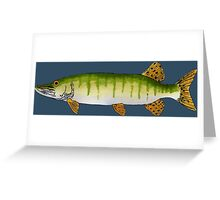 Muskellunge (Muskie) Greeting Card