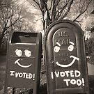 voting mailboxes by asyrum
