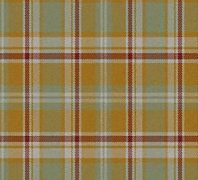 02861 Henry County, Georgia E-fficial Fashion Tartan Fabric Print Iphone Case by Detnecs2013