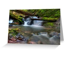Goat Creek.....Again Greeting Card