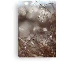 Pure Morning II Canvas Print
