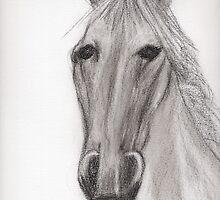 horse by Marmellino