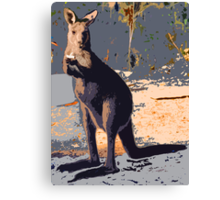 ROLLIE ROO Canvas Print