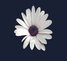 Beautiful Osteospermum White Daisy With Purple Center  Kids Clothes