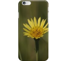 Yellow Wild Flower which I don't know the name of iPhone Case/Skin
