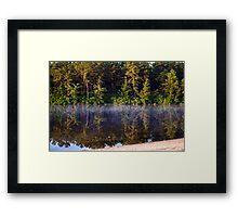 Bald Eagle Over Harry Wright Lake Framed Print