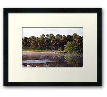 Bald Eagle and Great Blue Heron at Harry Wright Lake Framed Print