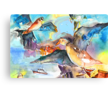 Seagulls in Cinque Terre in italy Canvas Print
