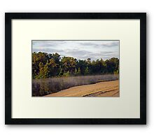Bald Eagle Leaves Harry Wright Lake  Framed Print
