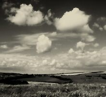Across the South Downs by plcimages
