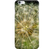 Dandelion - 'clock flower' iPhone Case/Skin