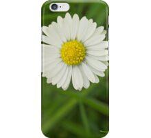 Pretty little daisy iPhone Case/Skin