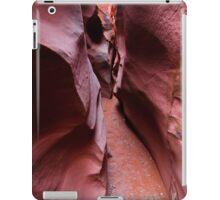 Spooky Canyon iPad Case/Skin