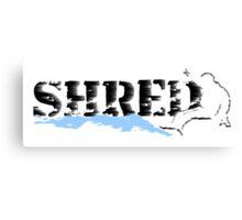snowboard : shred Canvas Print